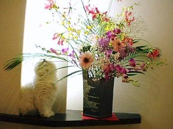 花とぎん3.JPG